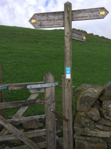 These signs are called 'finger posts'. They are very useful. Far better than 'way marks'.