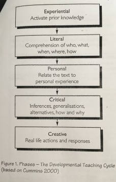 Figure 1. Phases - The Developmental Teaching Cycle (Based on Cummins 2000)